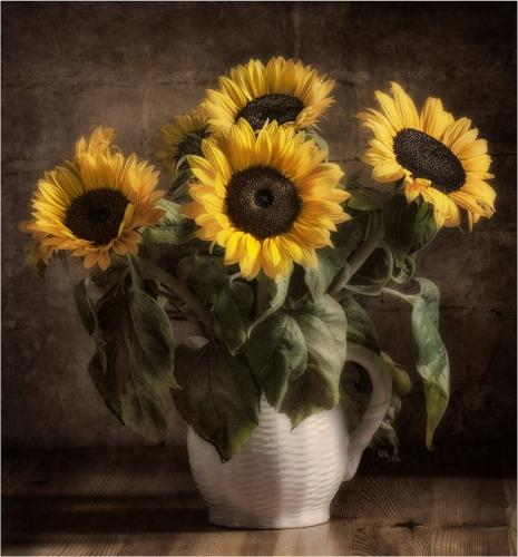 Sunflower Jug