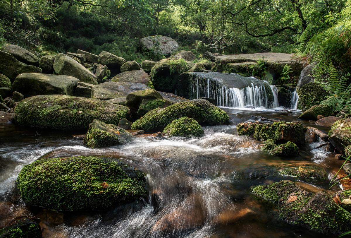 Go with the flow - Jack Roberts