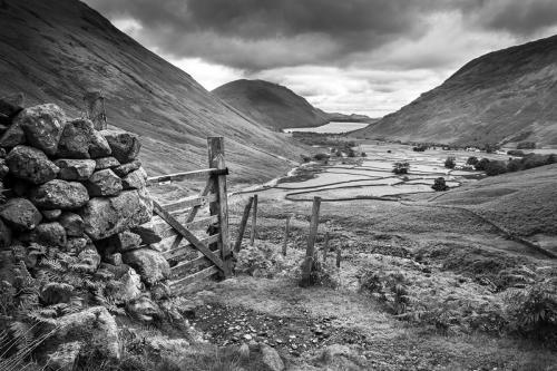 The Walled fields of Wasdale Head