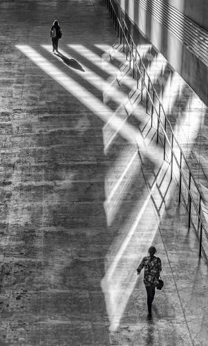 Follow Me Into The Light