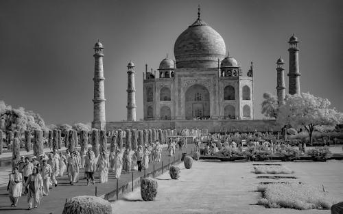 Infrared Glow  At The Taj Mahal