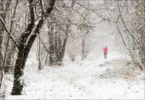 A Wintery Walk