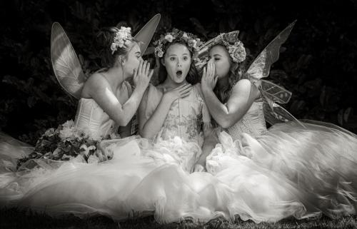 The Shocked Fairy