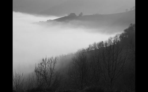In the Mist and Cloud