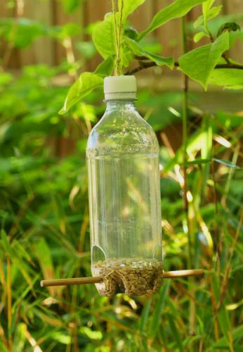 Graham Davey_Water Bottle Bird Feeder