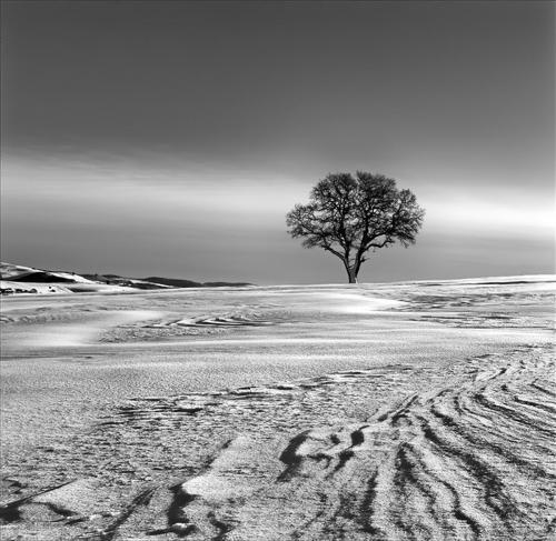 Windswept Snow Pattern