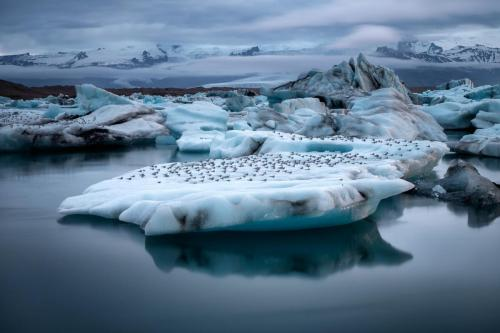 Jokulsarlon at Midnight